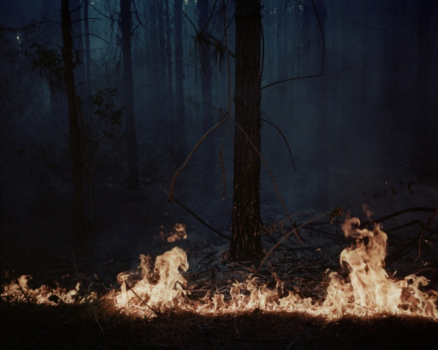 © Katrin Koenning, Fire in the Forest #1 from Indefinitely, 2014