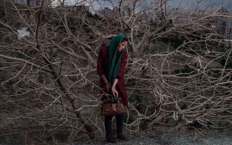 © Newsha Tavakolian from Blank Pages of an Iranian Photo Album (cropped)
